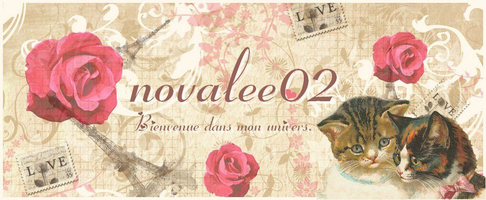 Point de croix. Scrapbooking. Crochet. Photos etc ... Chez novalee02