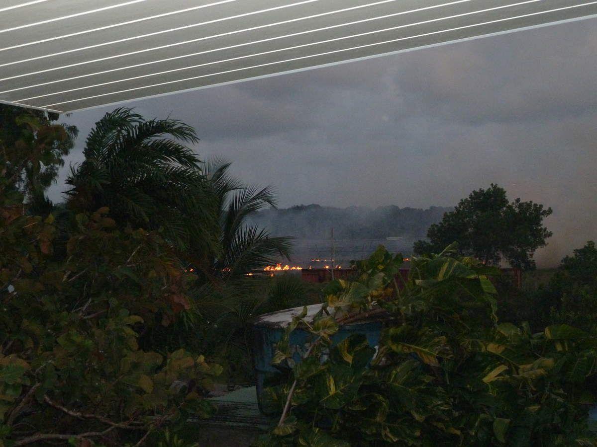 Chronique guyanaise, dernière journée avant le retour en forêt, 1 avril 2014