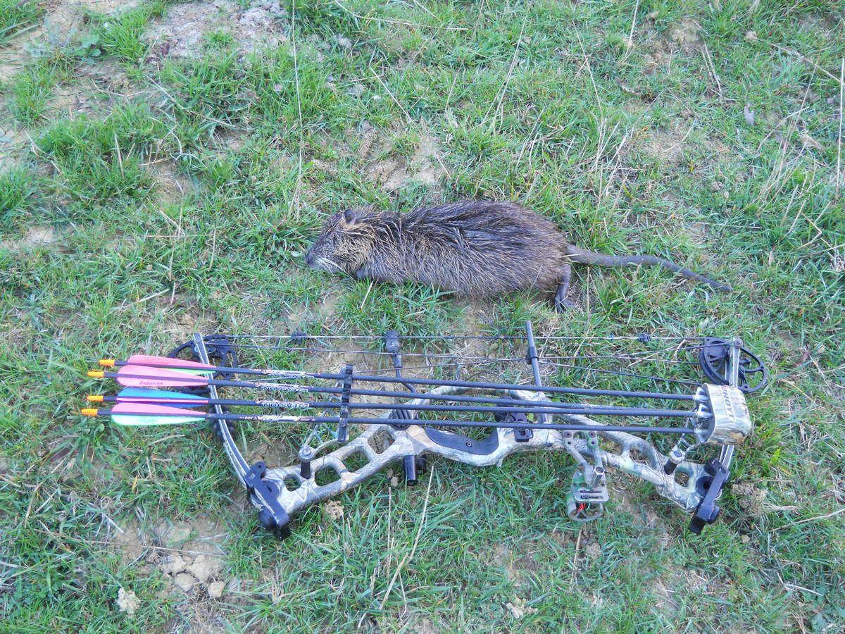 Un week end entre archers, du 23 au 25 octobre 2010