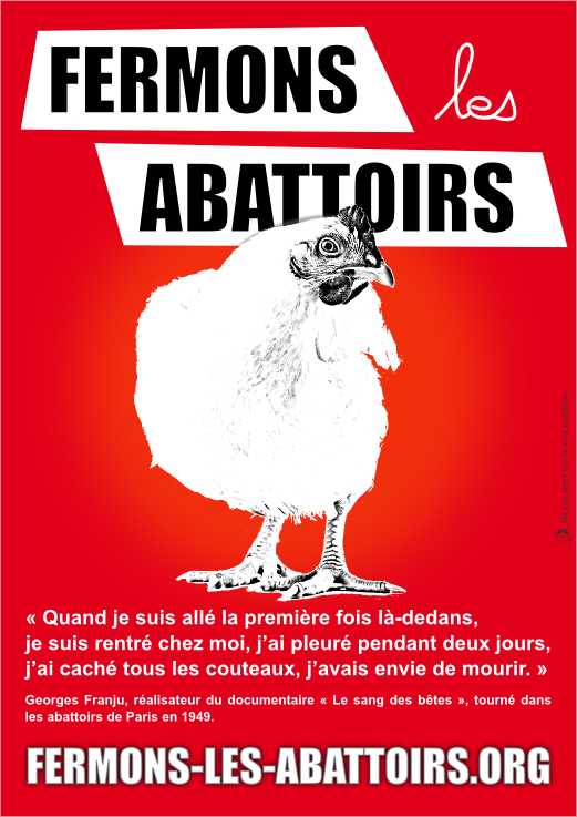 Abattoirs et protection animale : une impasse ?