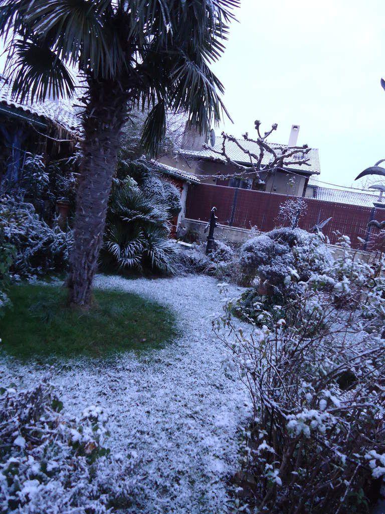 Apparition surprise de la neige mercredi 10 février .....