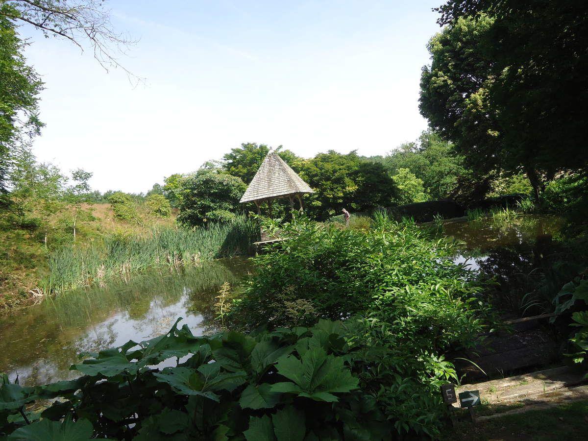 Mon voyage dans la Creuse  ....suite : l'arboretum de la Sedelle