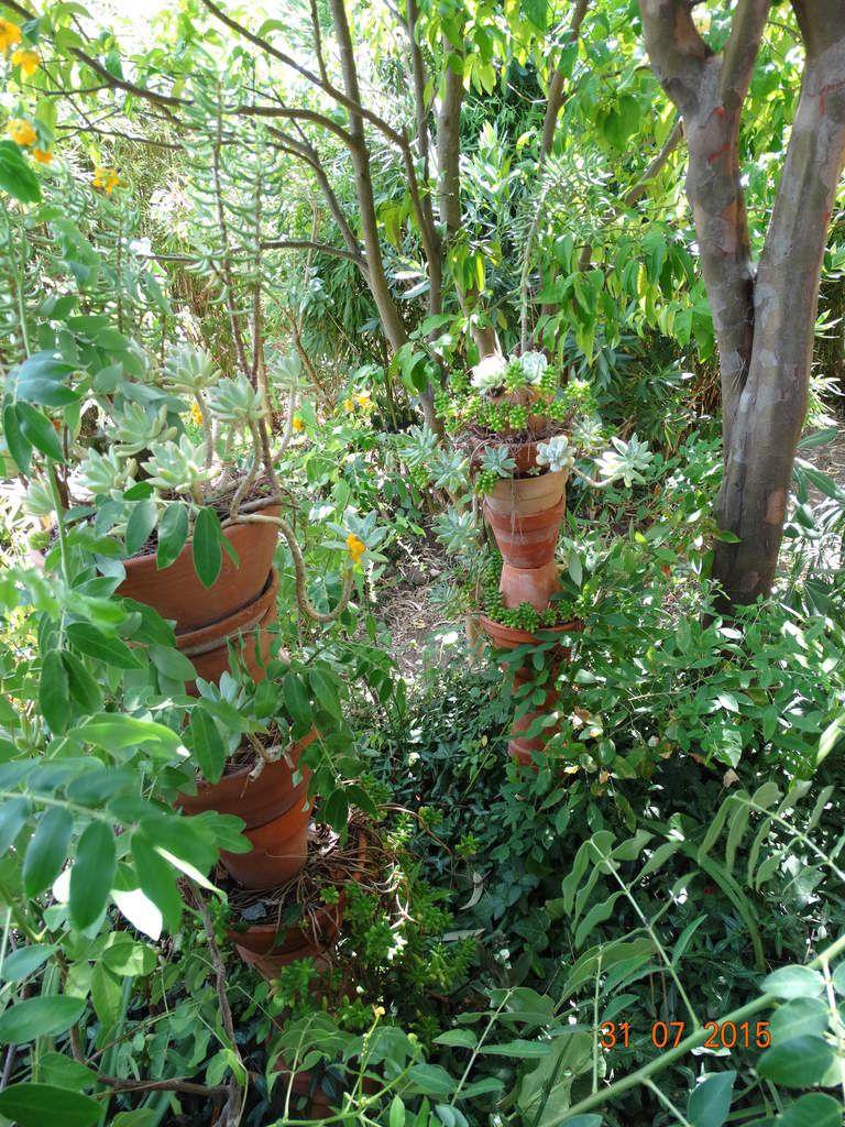 Le jardin de la Pomme d'Ambre dans le Var .....