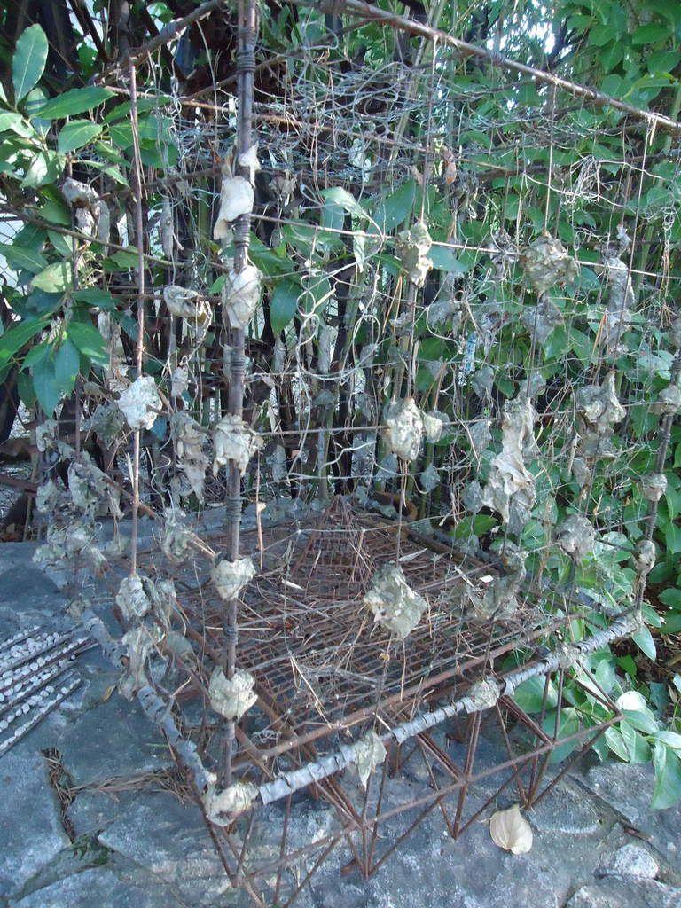 Mes sorties jardins : Le jardin d'Eguilles