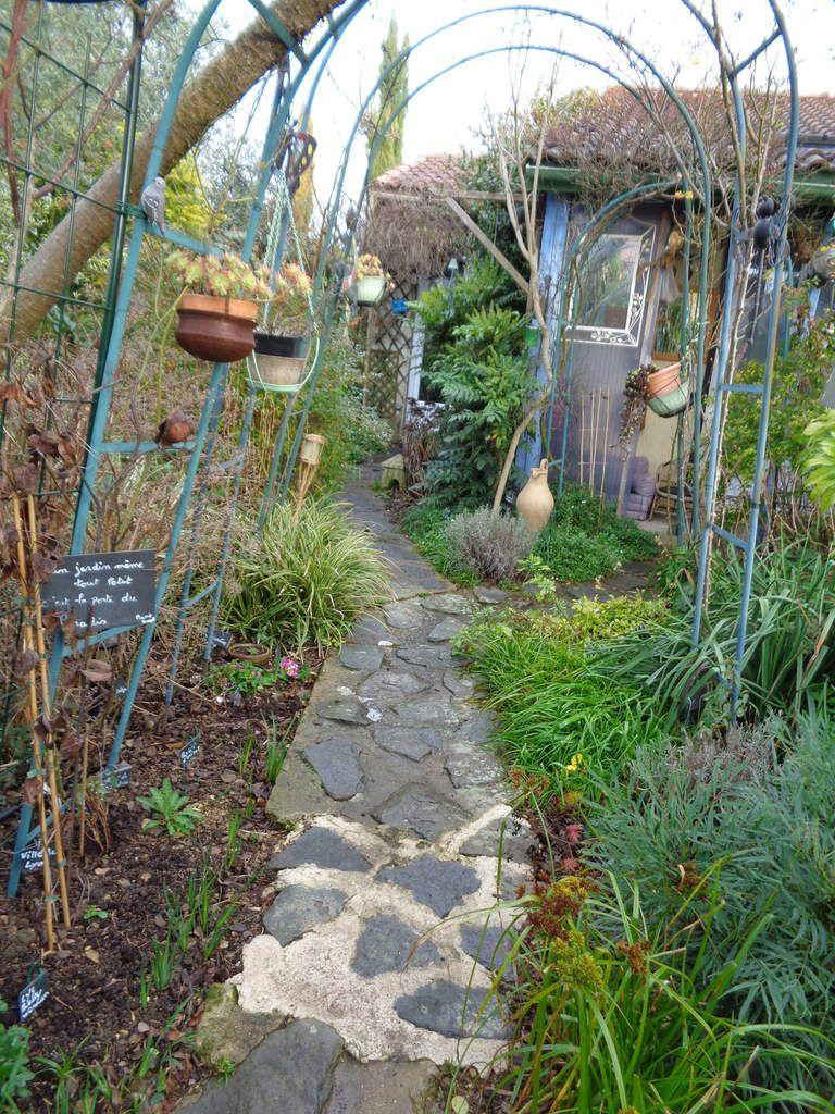 Toutes les photos de mon jardin actuellement ......