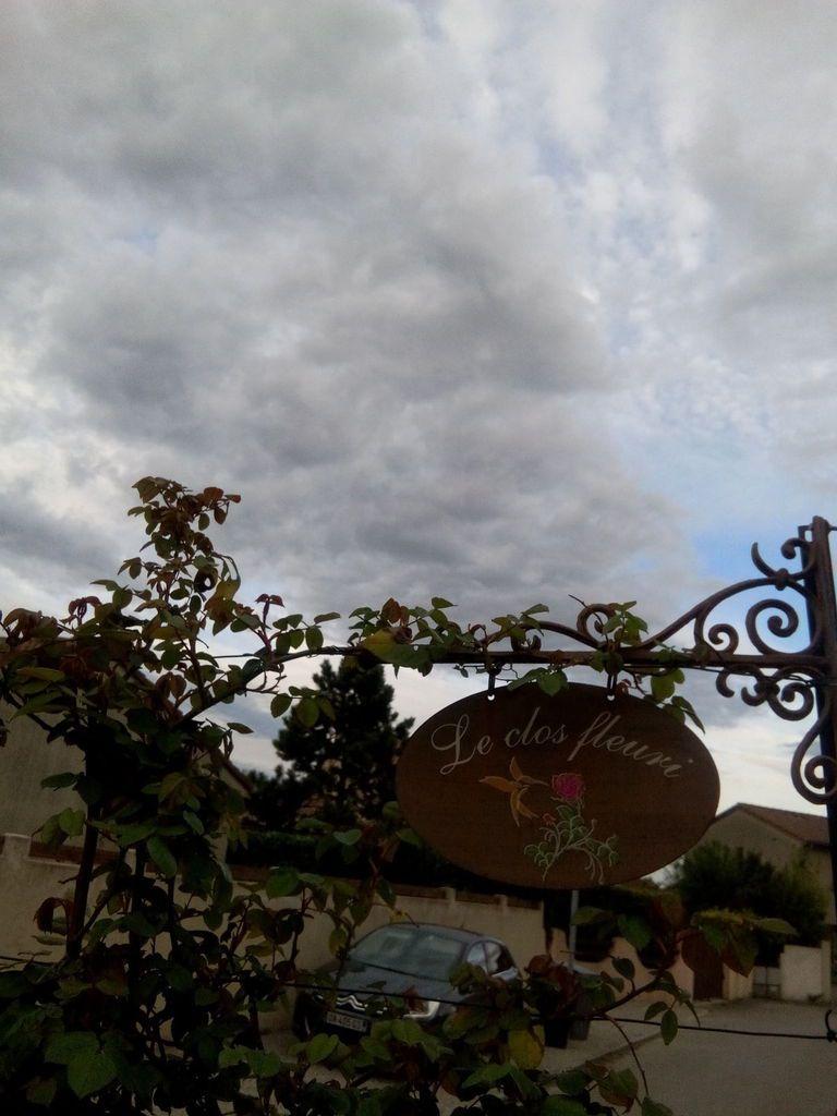 Photos prises ce matin dans mon jardin Le Clos Fleuri