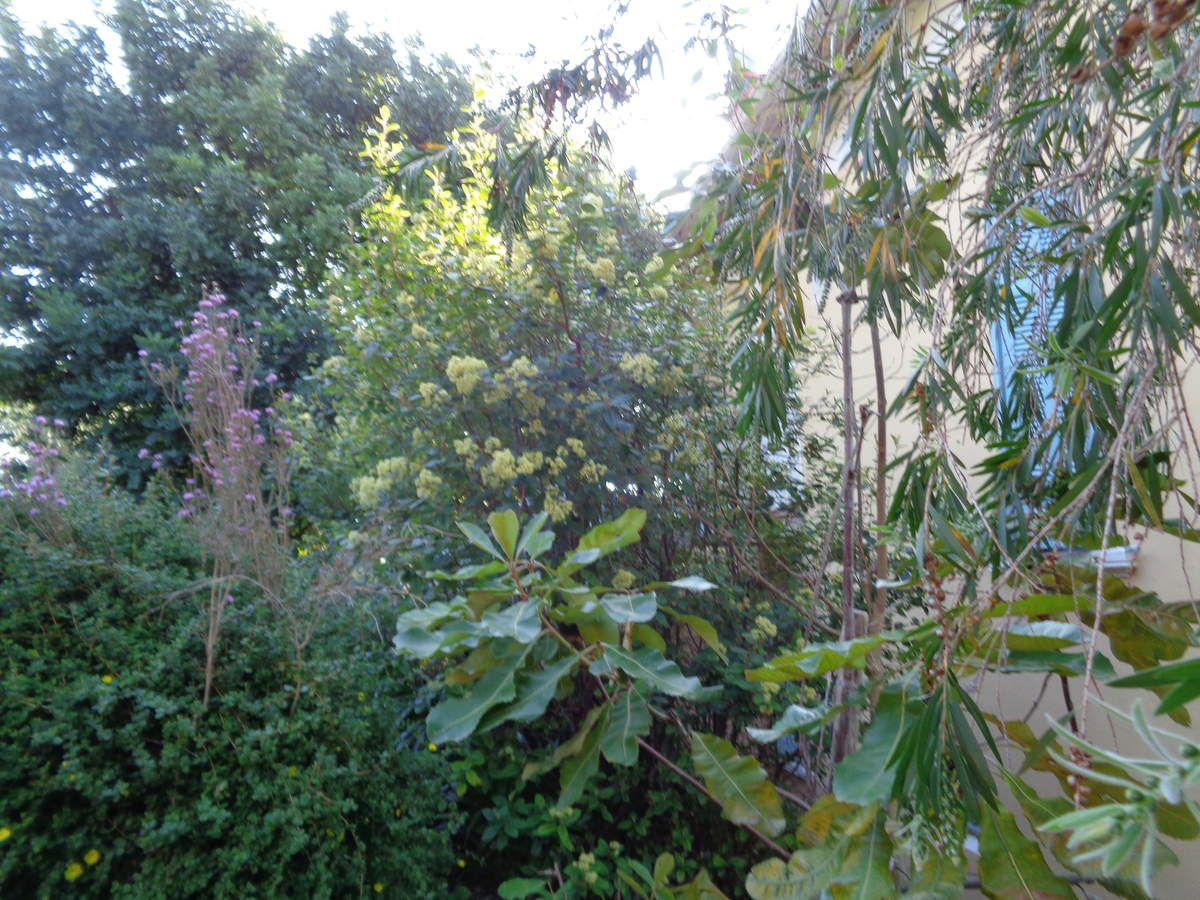 Mon voyage dans le Var avec la visite du parc Gonzales à Bormes les Mimosas