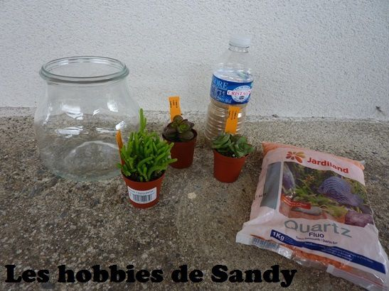 diy terrarium de plantes grasses succulentes pour 15 euros les hobbies de sandy. Black Bedroom Furniture Sets. Home Design Ideas