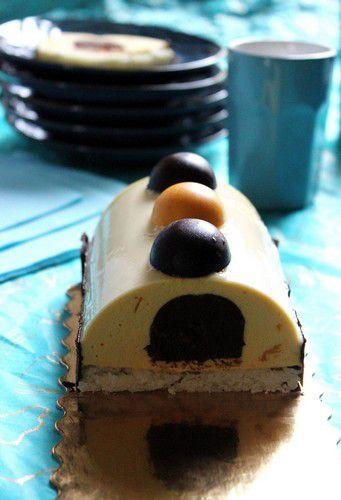 Buche Bavaroise Abricot-Mangue-chocolat et sa dacquoise coco