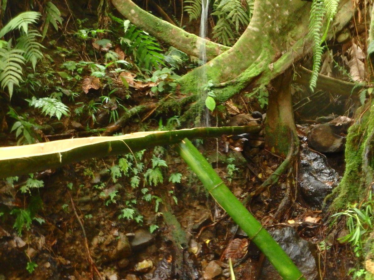Béquille pour stabiliser la canalisations après la chute