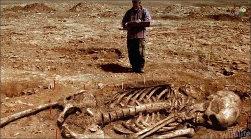 Yes, Giants Did Exist According to the Bible
