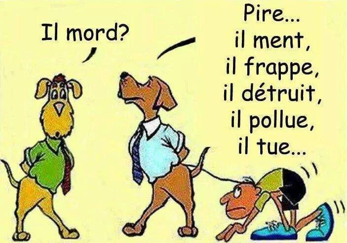 REX humour homme pollution planete