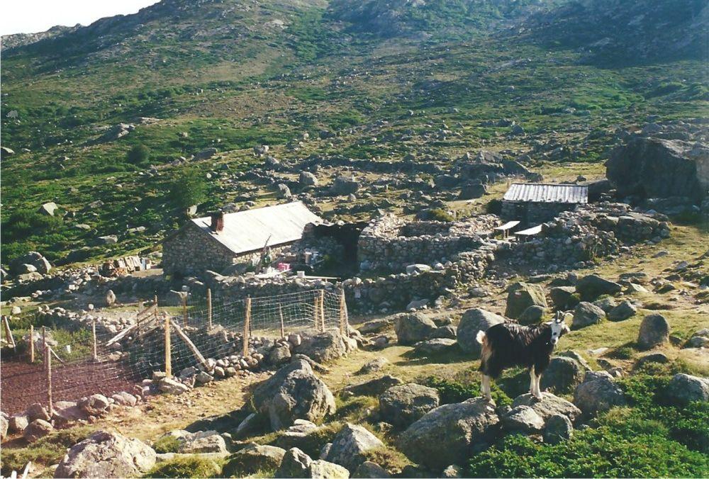 Les bergeries de Vaccaghja