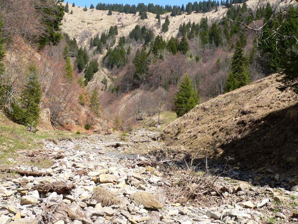 Le ruisseau du Haut du Four