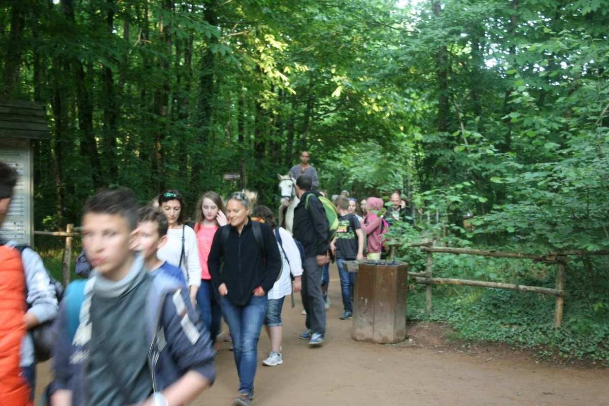 Les 5èmes du Puy du Fou - 12 et 13 juin 2015