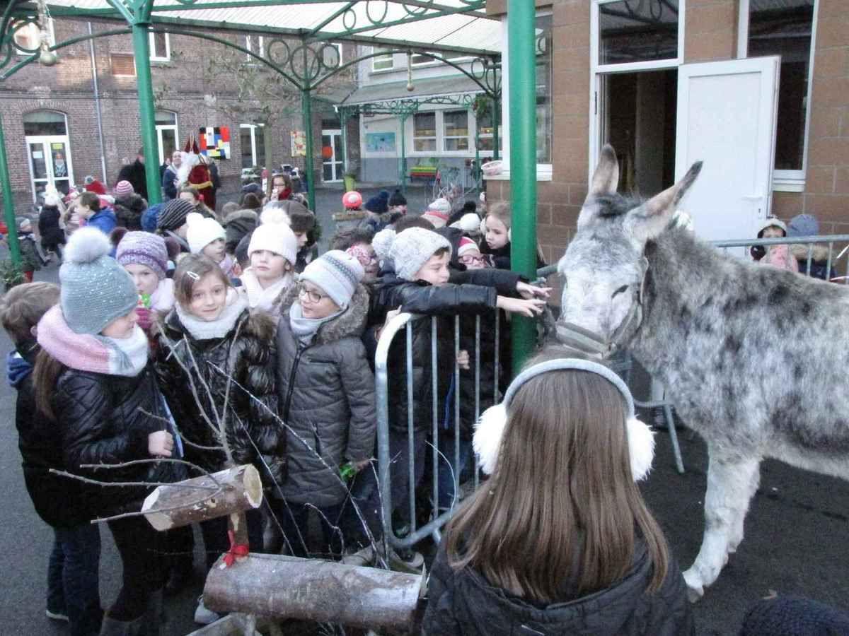 Visite de Saint-Nicolas et de son âne