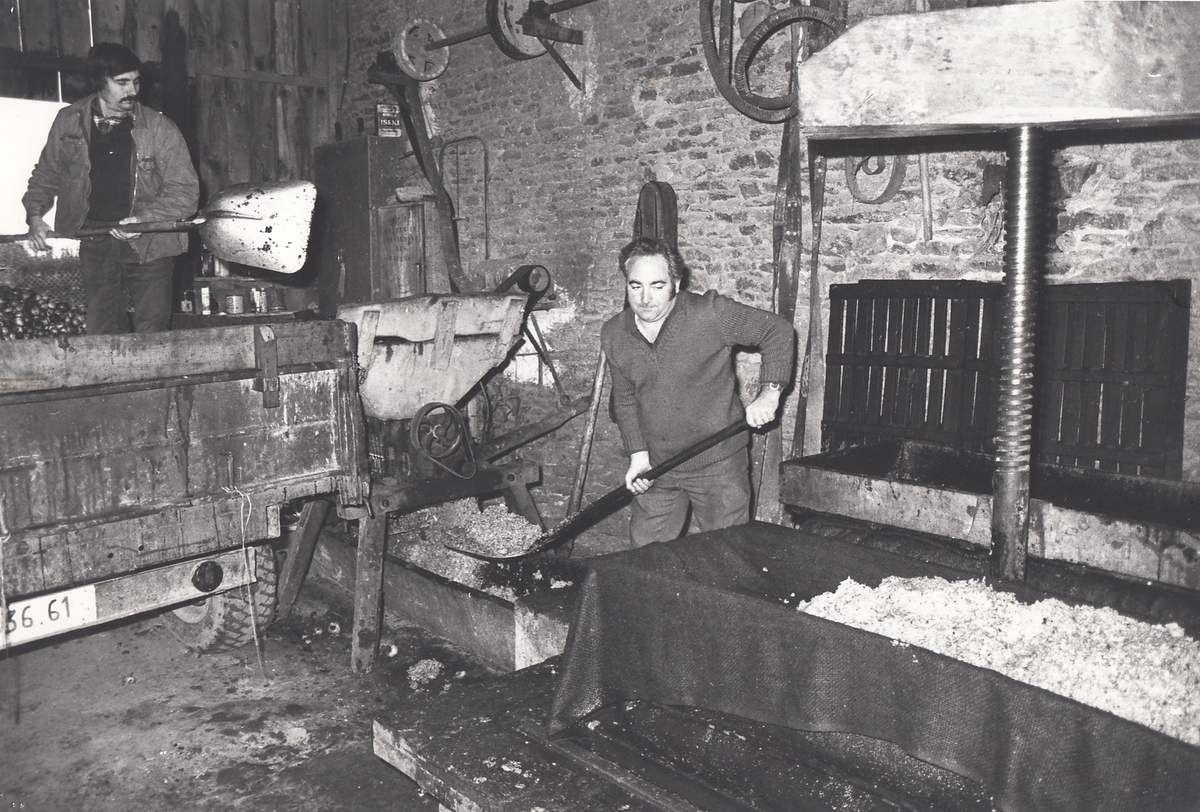Broyage des pommes et pelletage du marc à Vignerette (Champfrémont) en 1980.