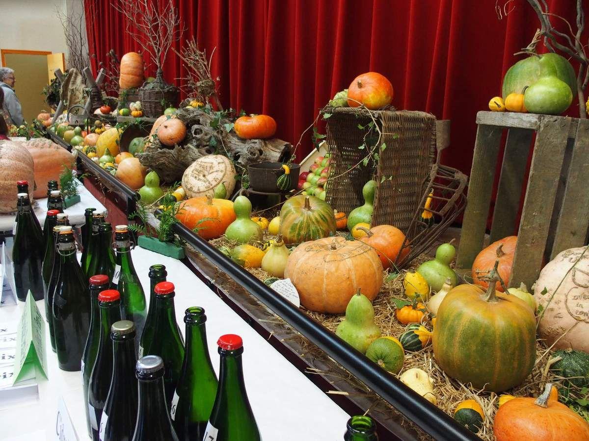 L'exposition de cucurbitacées et les bouteilles du concours de cidre et poiré.
