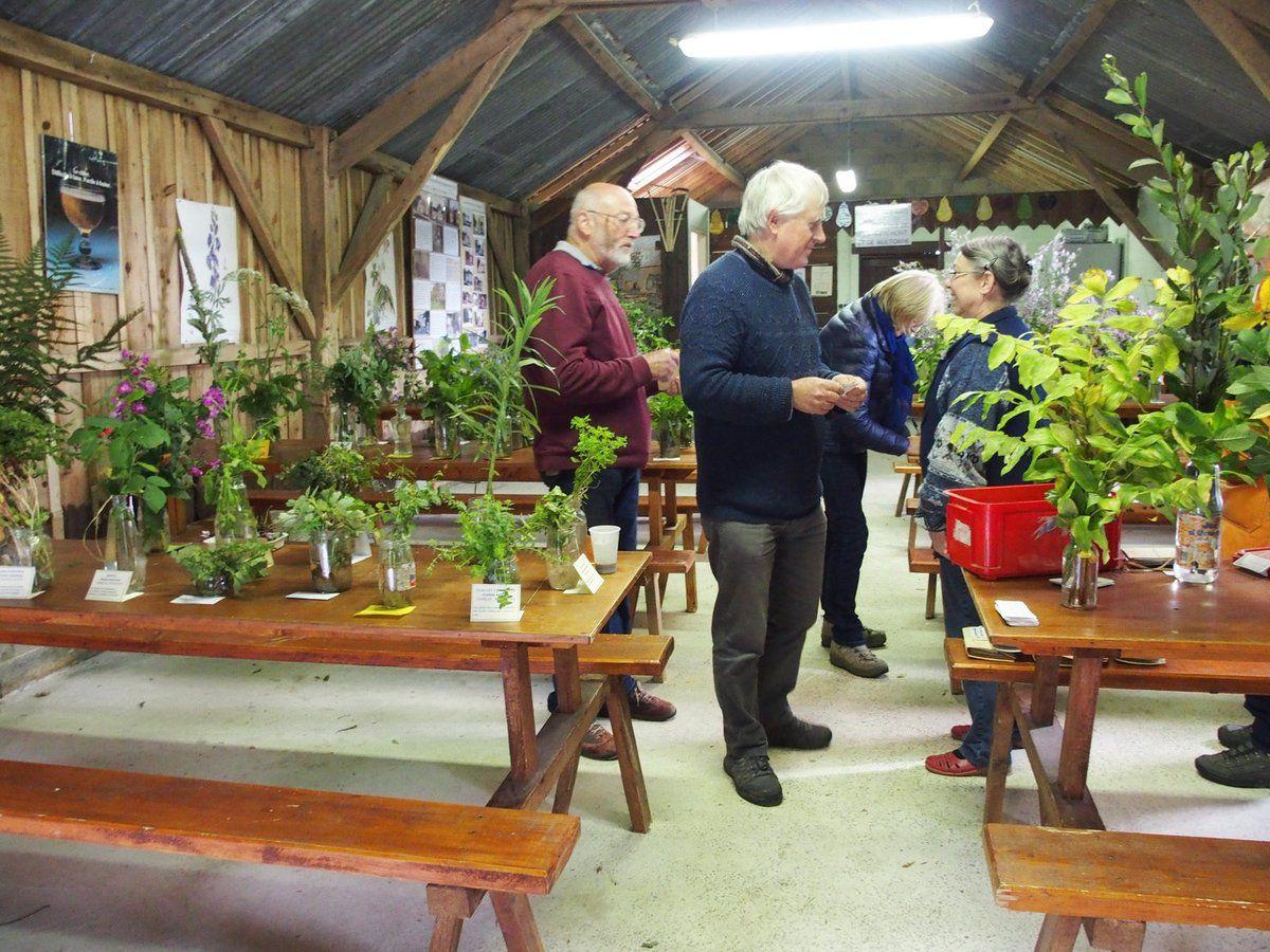 Les botanistes, Maurice Gérard et Marc Velter, terminent la mise en place de l'exposition.