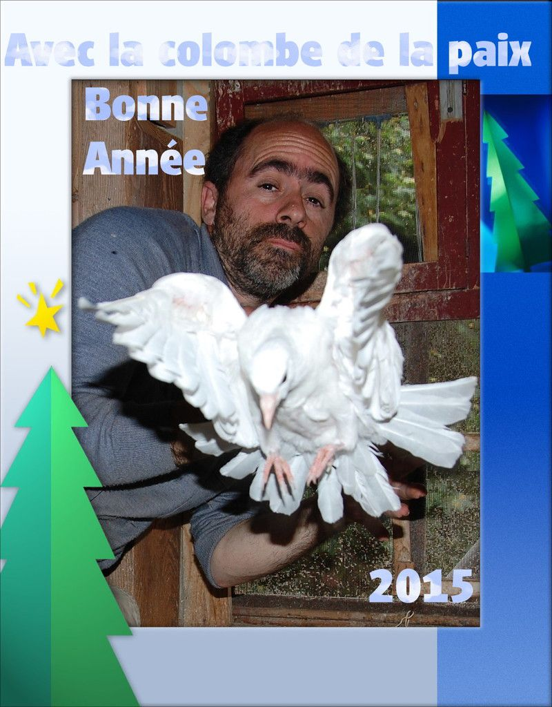 La 18ème carte avec mon bonheur être au milieu des colombes, des blanches colombes et 18 c'est le nombre d'année de mon entreprise.