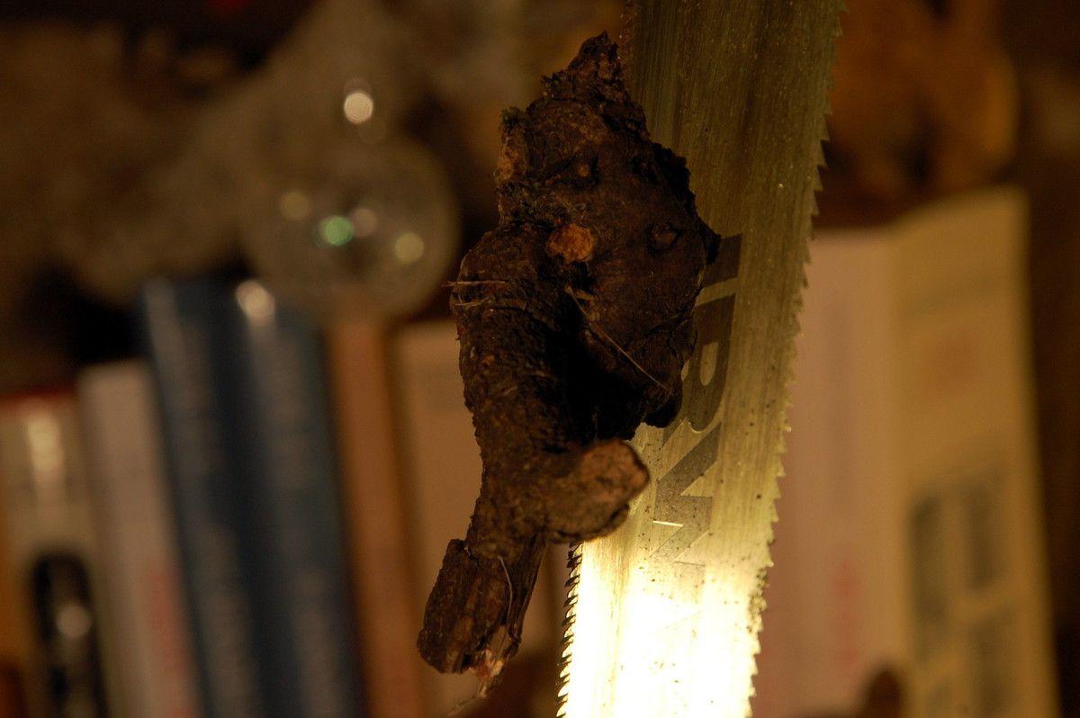 Le bois tient sur la scie, un beau personnage en vigne.