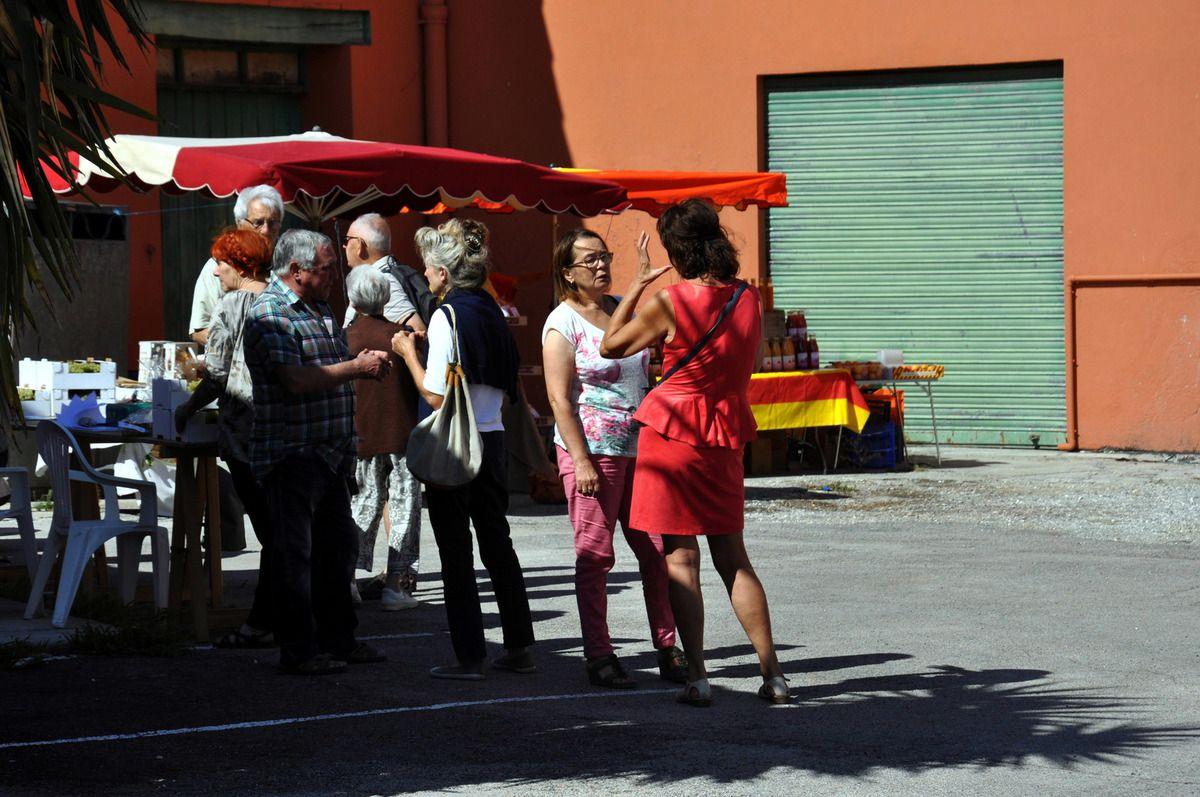 7ème Fête du Jaoumet à Cases de Pène en 40 photos