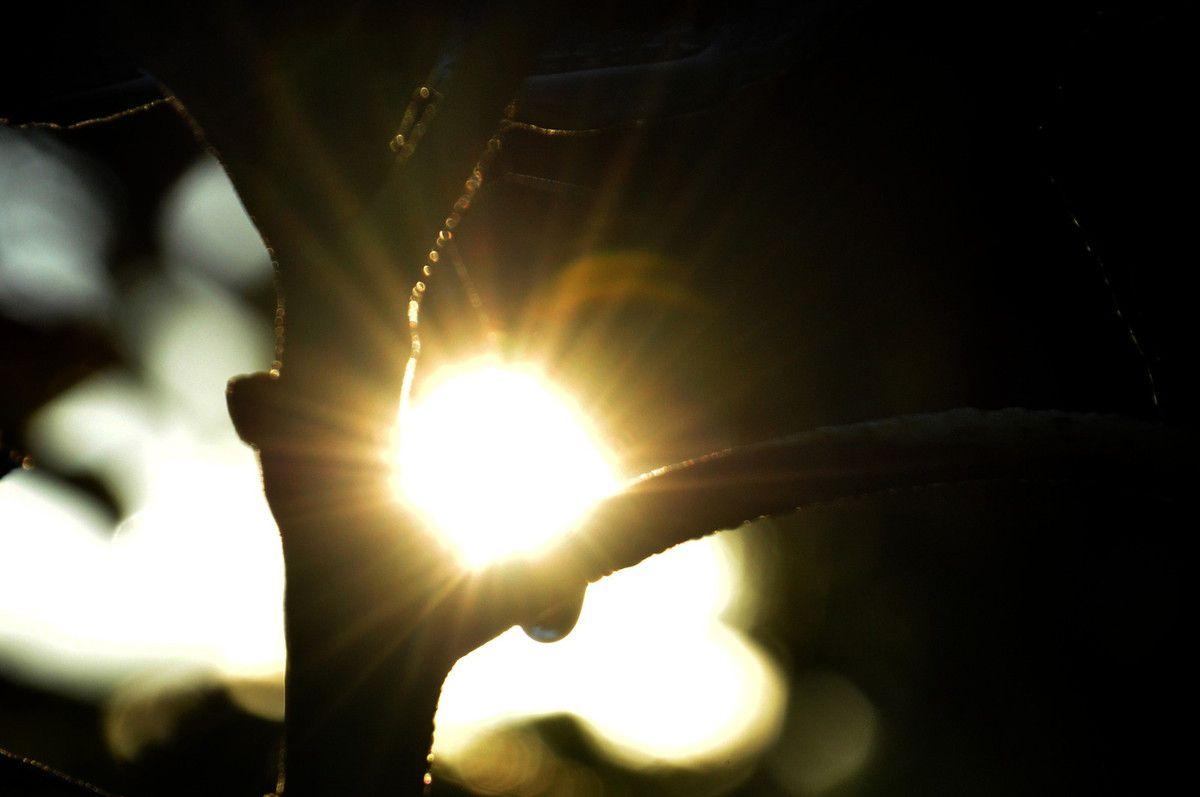 Soleil et goutte d'eau.