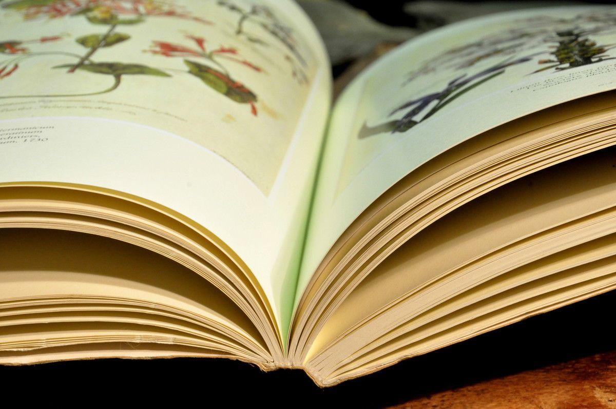 A livre ouvert.