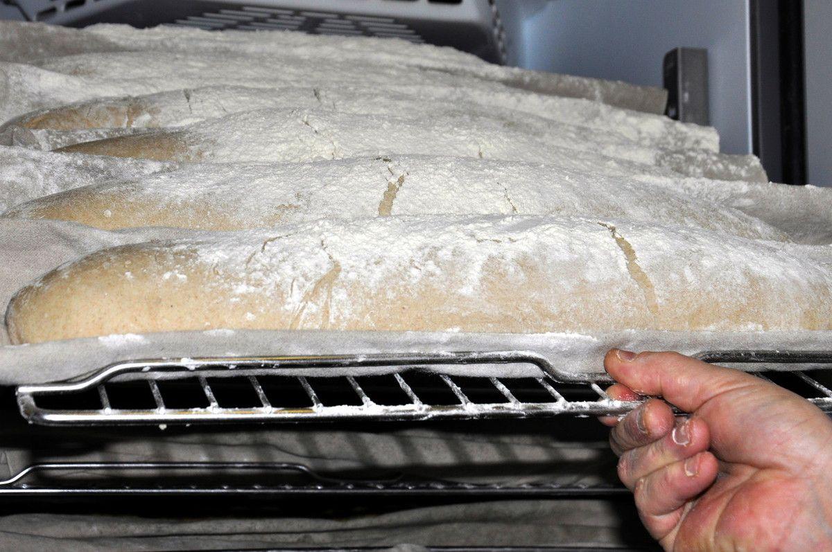 Des pains toujours en sortie de la chambre de fermentation.