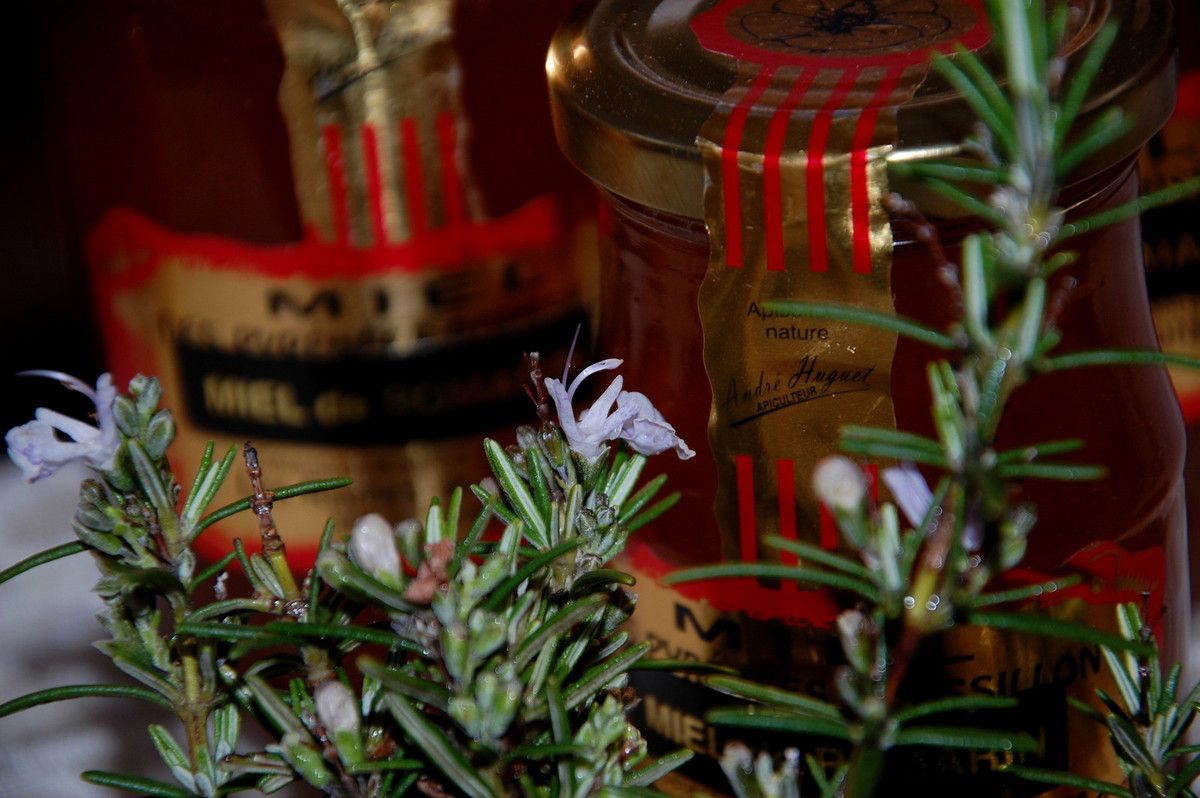Le miel de Romarin de la ruche de Tautavel.