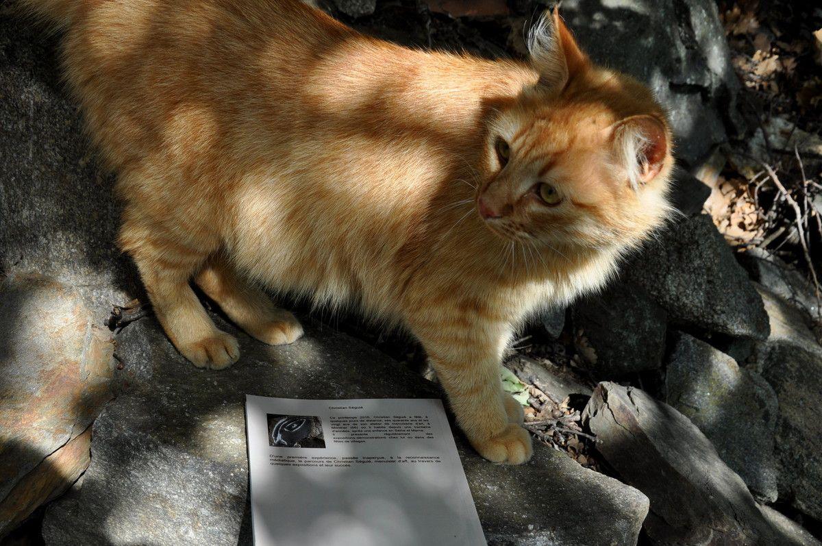 Mon premier lecteur de mon livre en format papier.