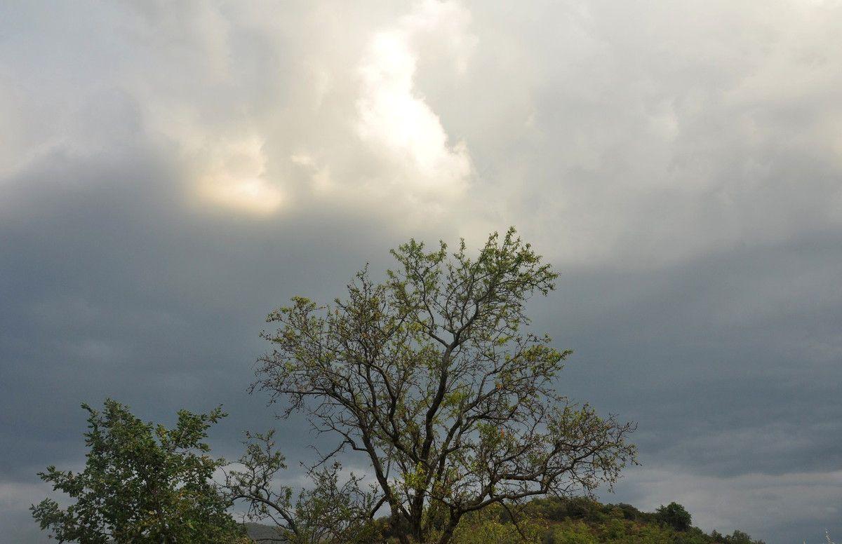 Un ciel à l'amande.