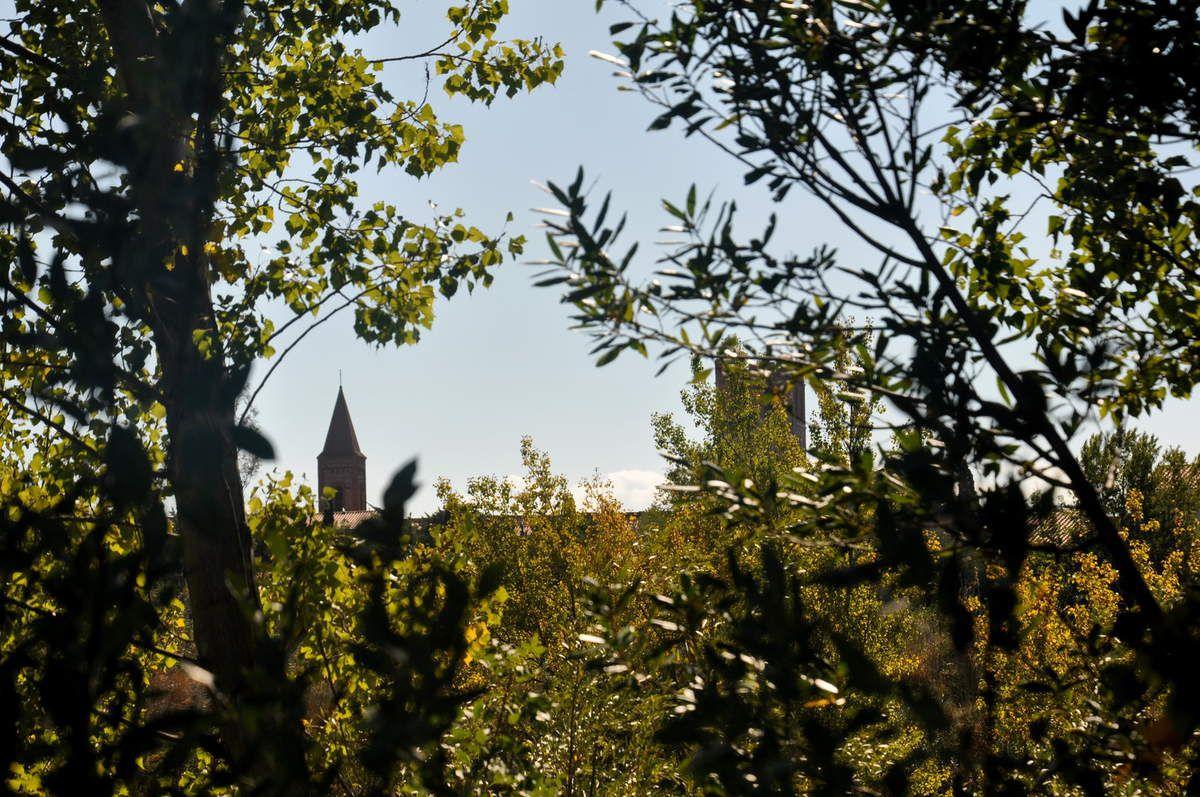 Un ouverture dans la végétation pour prendre les deux tours ou clochers d'Espira