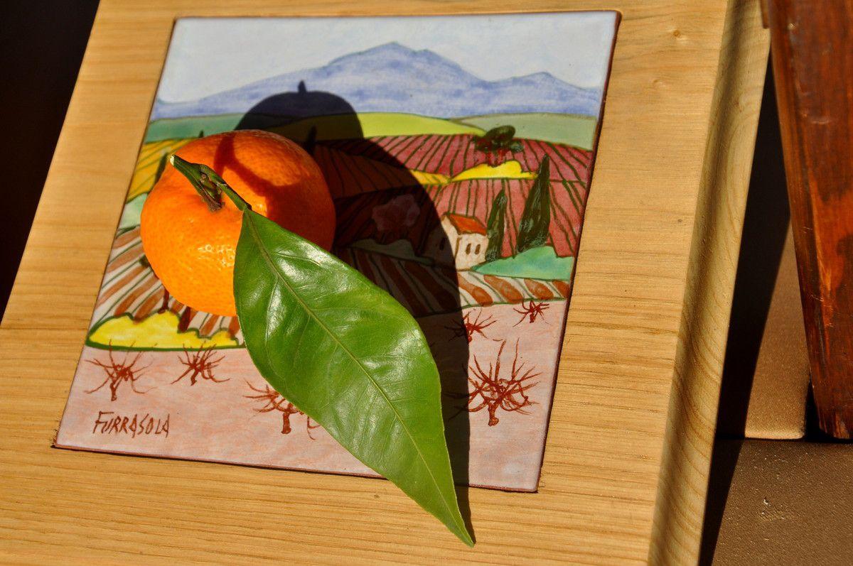 Les clémentines de Roberta d'Espira de l'Agly (mais quelles sont bonnes douces et sans pépin) de Corse pour la variété.