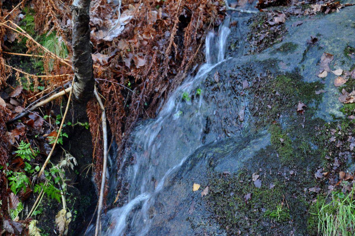 Cascades d'eau.