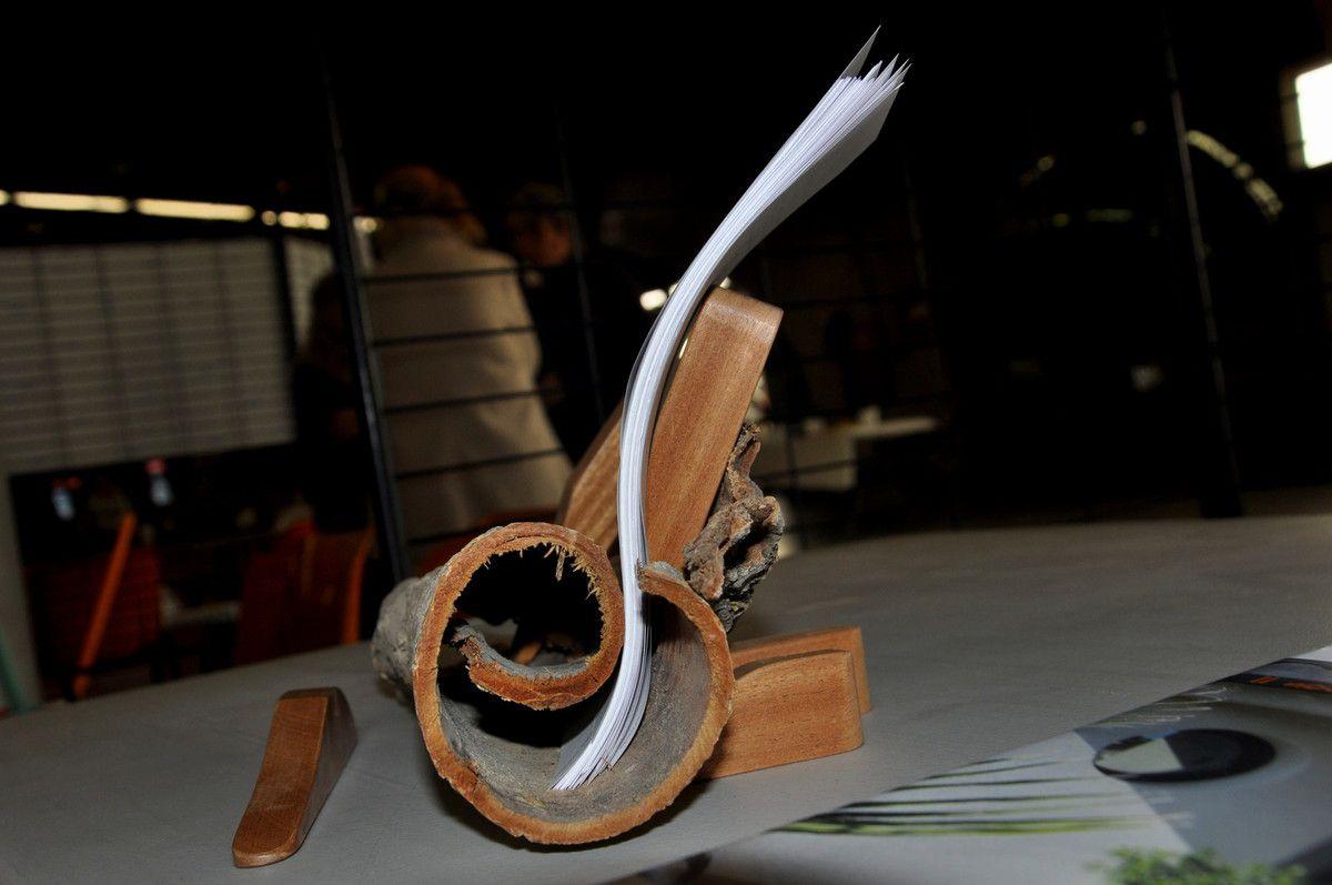 Du bois à l'écorce, le savoir s'écrit.
