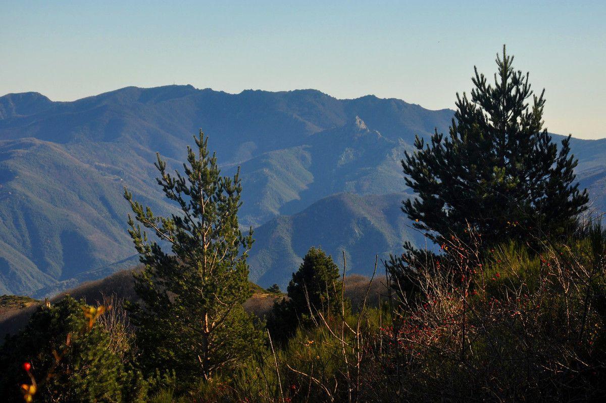 Nature et montagne.