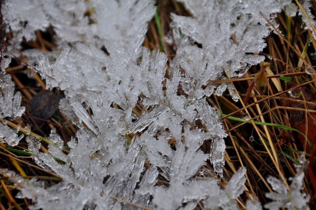 La beauté de la glace.