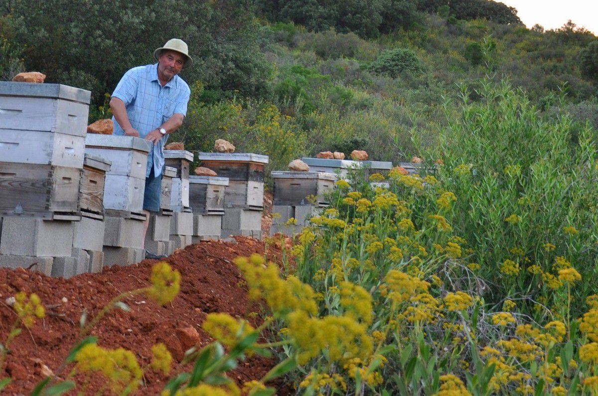 André Huguet à la ruche