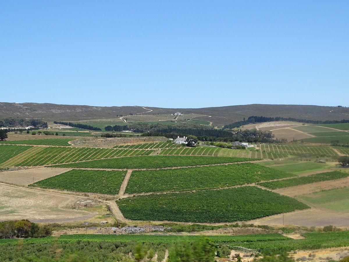 Afrique du Sud 4 (province du Cap)