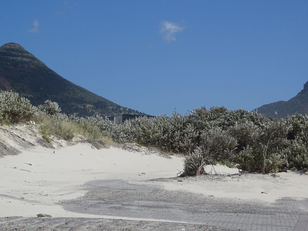 Le sable par grand vent qui envahit tout !