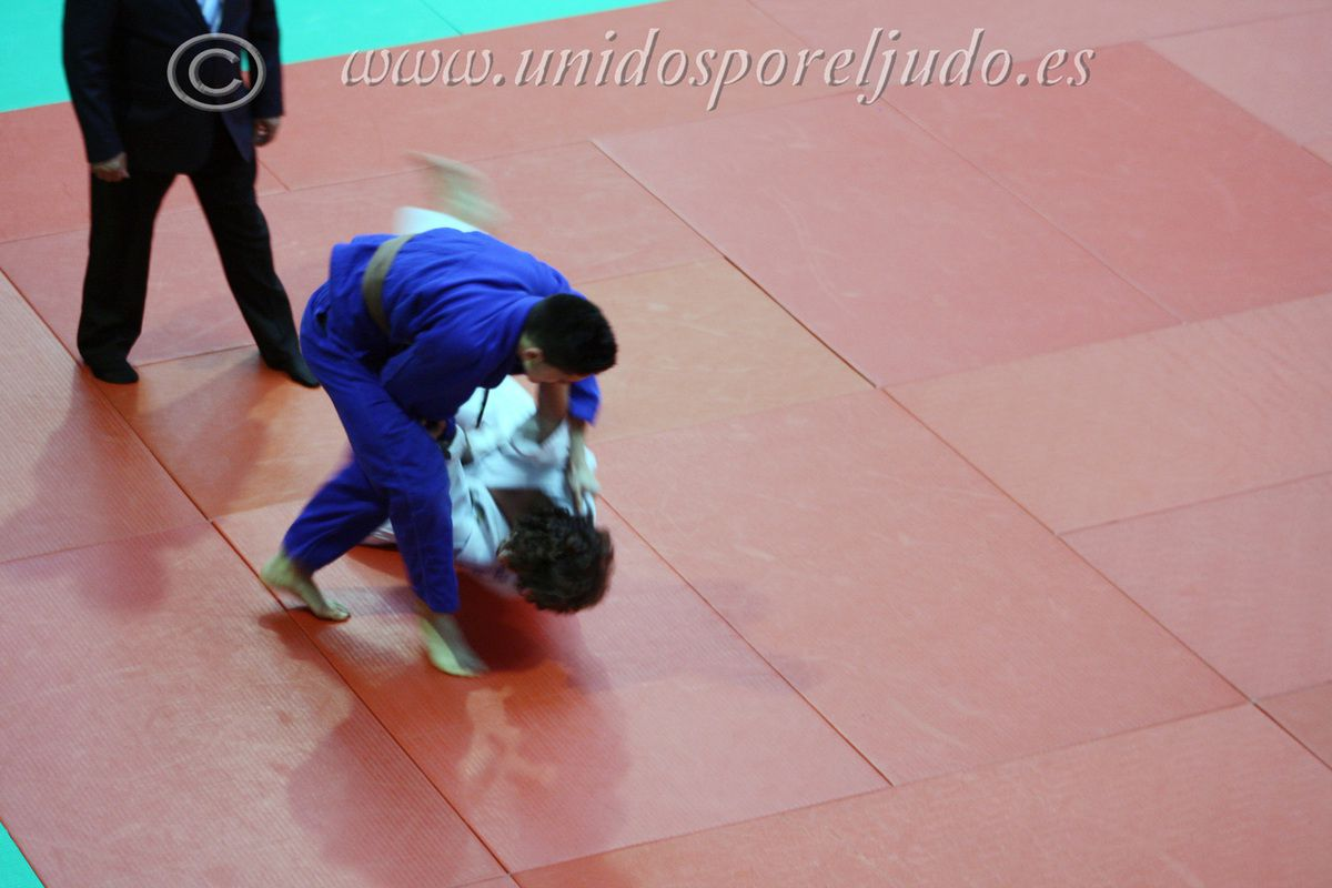 Campeonato de Madrid de Judo junior