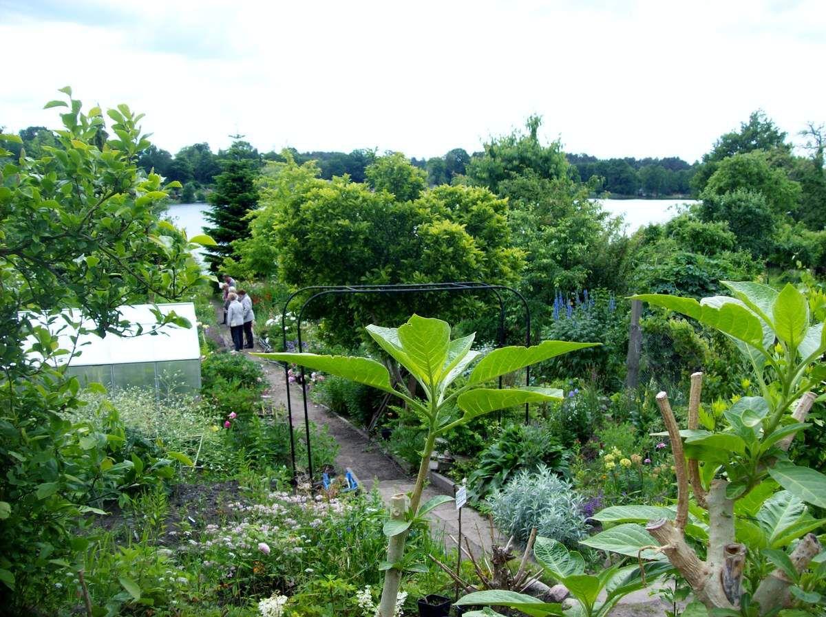 Ein offener Garten voller Tropfen...