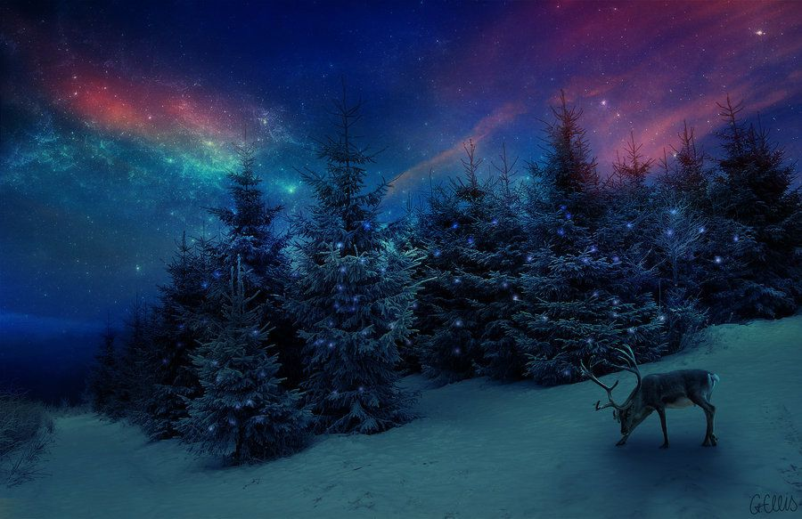 noel,christmas,paysage,landscape,hiver,winter,snow,neige,beautiful,magie,magic,féerie,fairy,fêtes,december,decembre