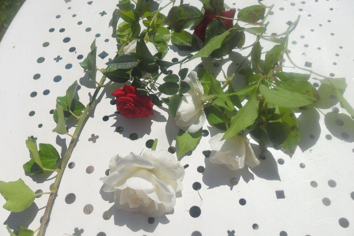 DIY Couronnes de Fleurs : Naturelles vs Artificielles