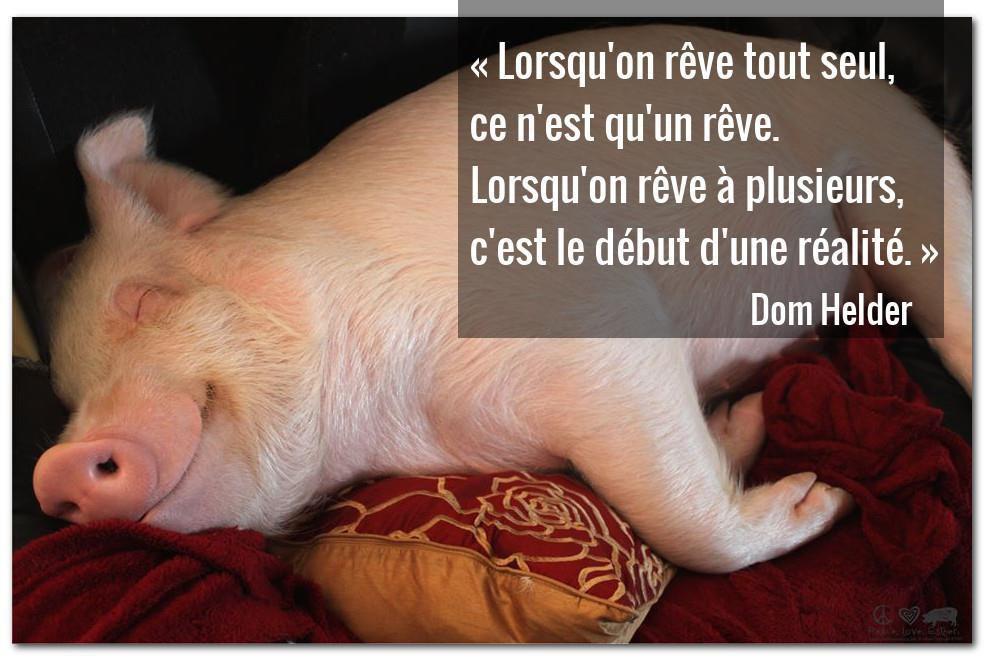Le végétalisme est une sublimation. Matthieu Ricard, Catherine Vincent.