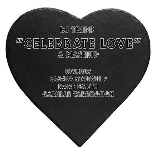 DJ Tripp - Celebrate Love (Cobra Starship vs. Rare Earth vs. Camille Yarbrough)