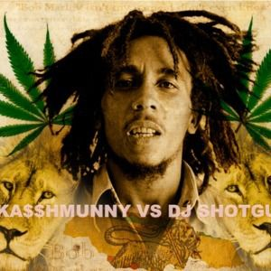 DJ SHOTGUNN VS DJ KASSHMUNNY - Could You Be Loved 2014