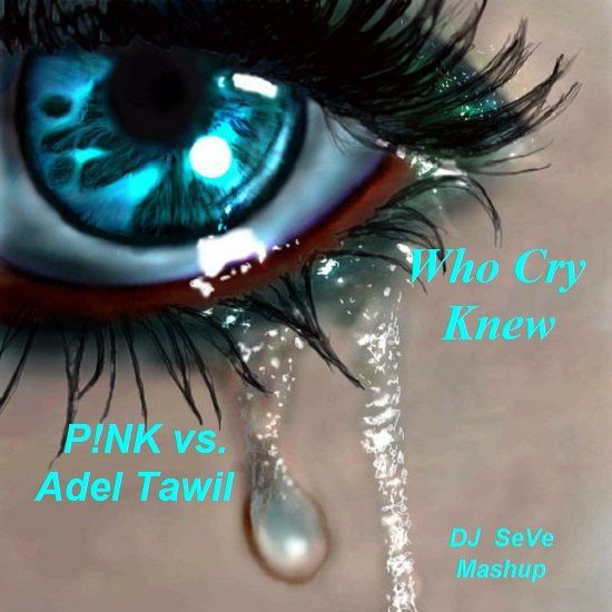 DJ SeVe - Who Cry Knew (P!NK vs. Adel Tawil)
