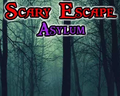 Scary Escape Asylum - Jeu Flash